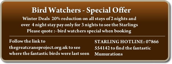 Bird Watchers - Special Offer. Winter Deals  20% reduction on all stays of 2 nights and over  4 night stay pay only for 3 nights to see the Starlings